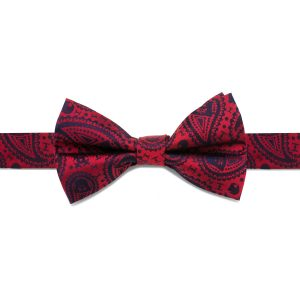 Darth Vader Paisley Big Boys' Silk Bow Tie